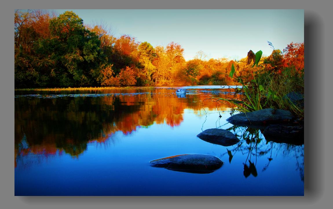 纽约展望公园秋色_图1-16