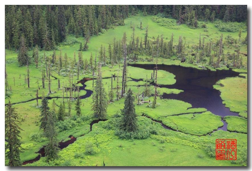 《原创摄影》:迷雾峡湾 (Misty Fjords) - 梦中的阿拉斯加之一_图1-33