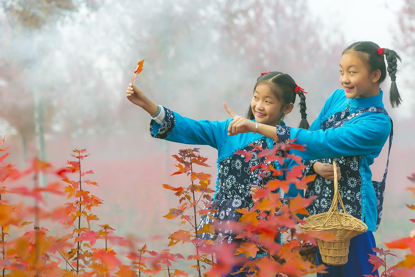 沂蒙山区竟然有这么一片童话般的树林 沂蒙小精灵火红的童年来袭 ..._图1-1