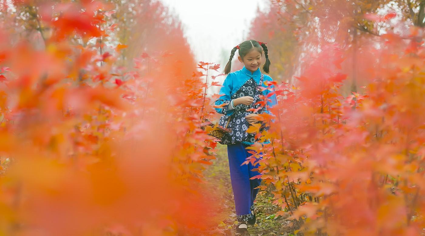 沂蒙山区竟然有这么一片童话般的树林 沂蒙小精灵火红的童年来袭 ..._图1-3