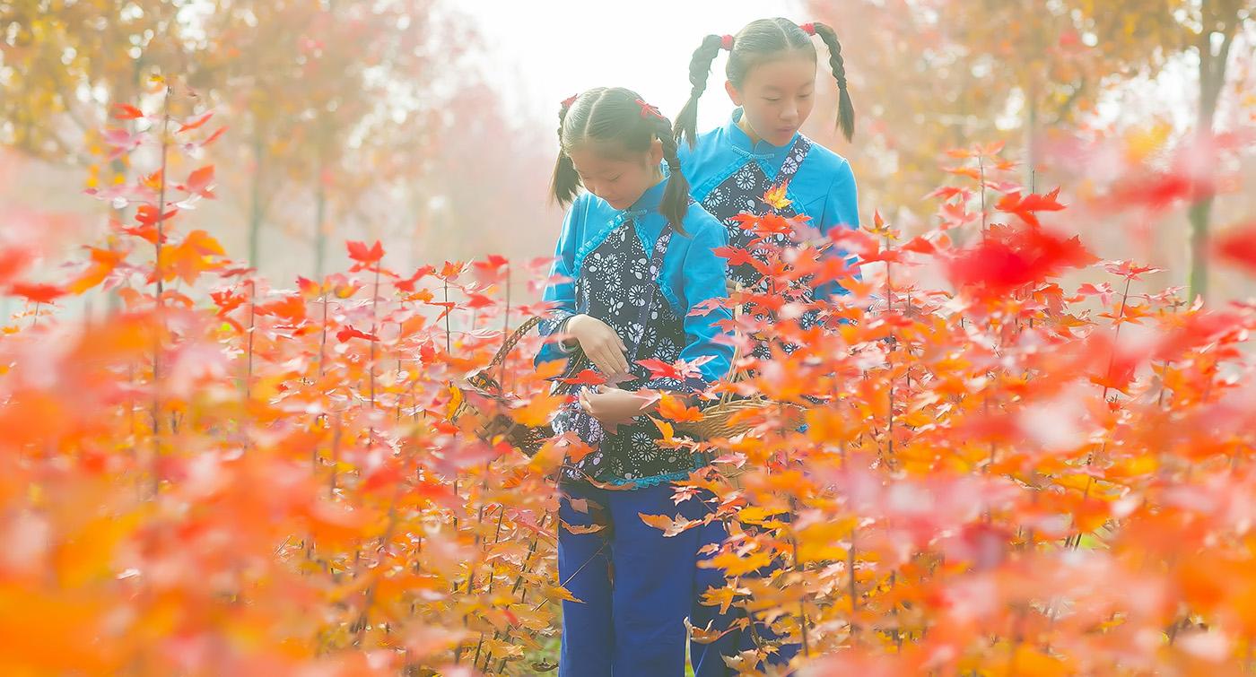 沂蒙山区竟然有这么一片童话般的树林 沂蒙小精灵火红的童年来袭 ..._图1-7