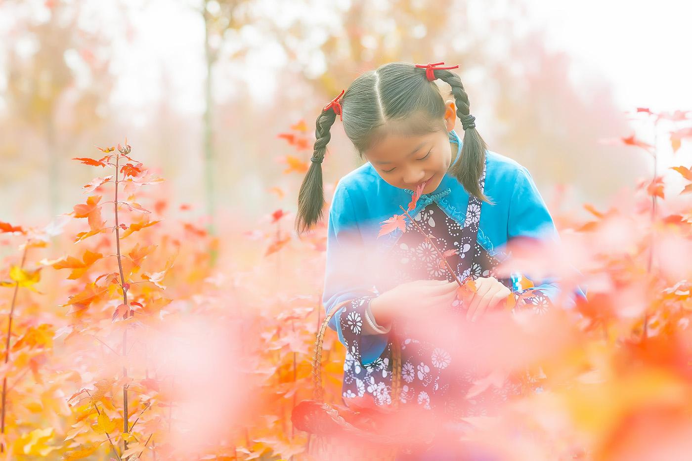 沂蒙山区竟然有这么一片童话般的树林 沂蒙小精灵火红的童年来袭 ..._图1-5