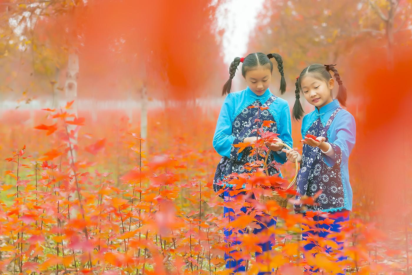 沂蒙山区竟然有这么一片童话般的树林 沂蒙小精灵火红的童年来袭 ..._图1-15