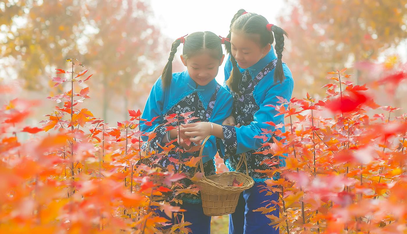 沂蒙山区竟然有这么一片童话般的树林 沂蒙小精灵火红的童年来袭 ..._图1-19