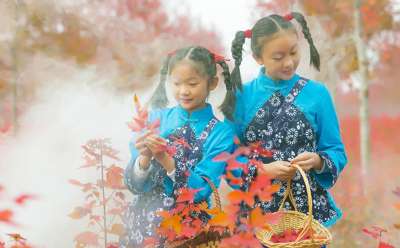 沂蒙山区竟然有这么一片童话般的树林 沂蒙小精灵火红的童年来袭 ..._图1-21