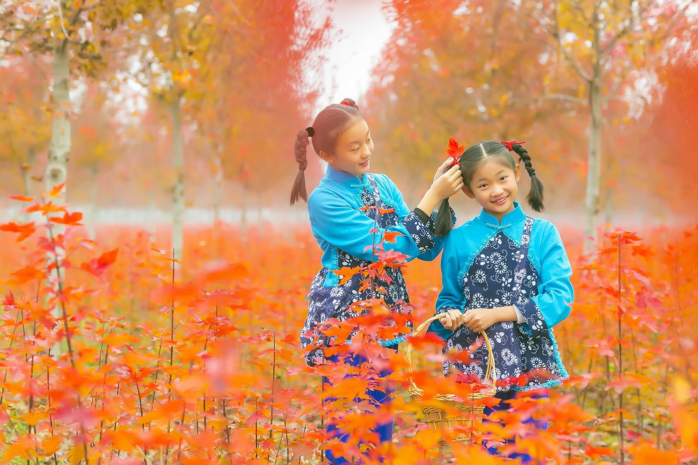 沂蒙山区竟然有这么一片童话般的树林 沂蒙小精灵火红的童年来袭 ..._图1-22