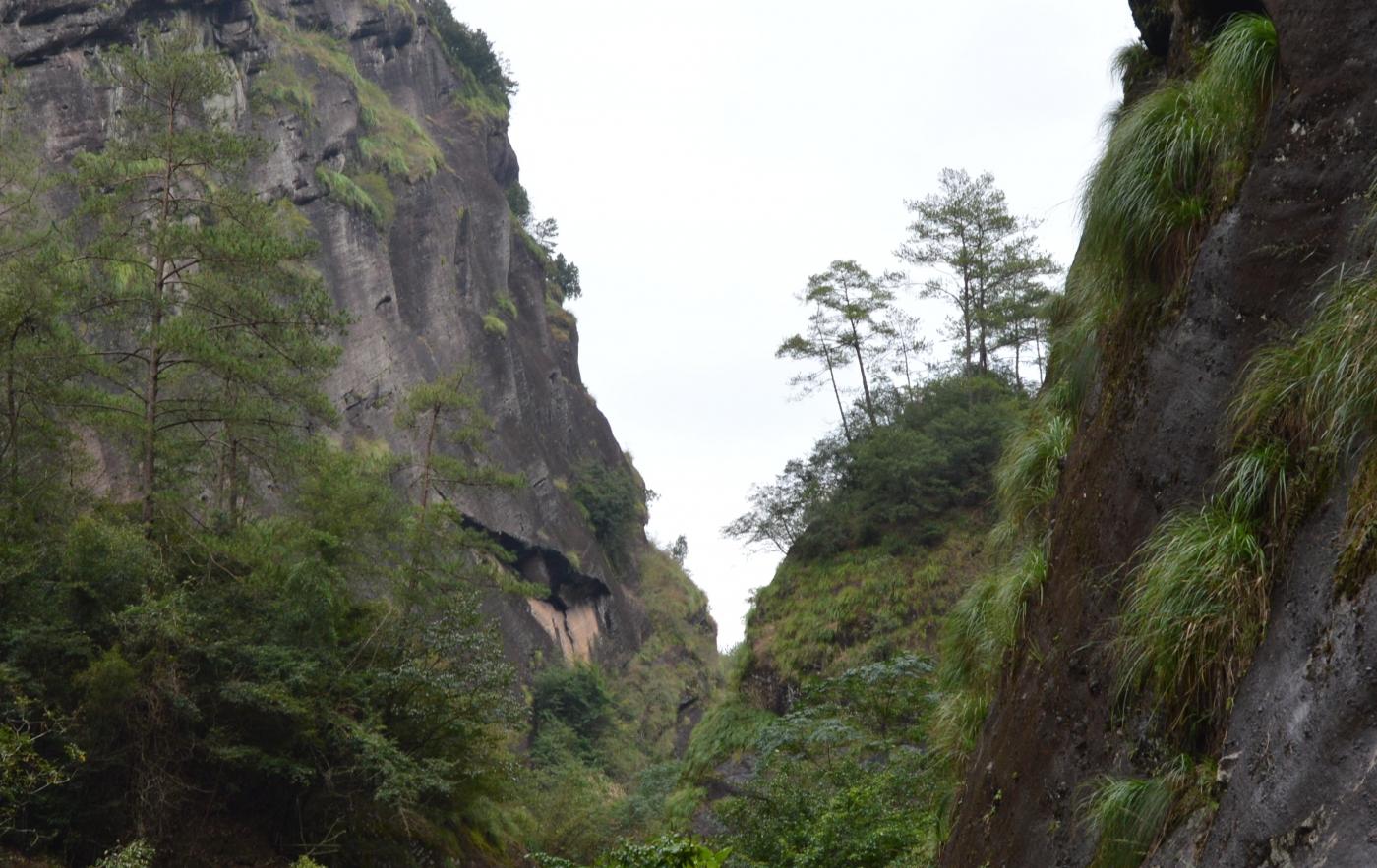 武夷山—那山、那水、那茶香_图1-31