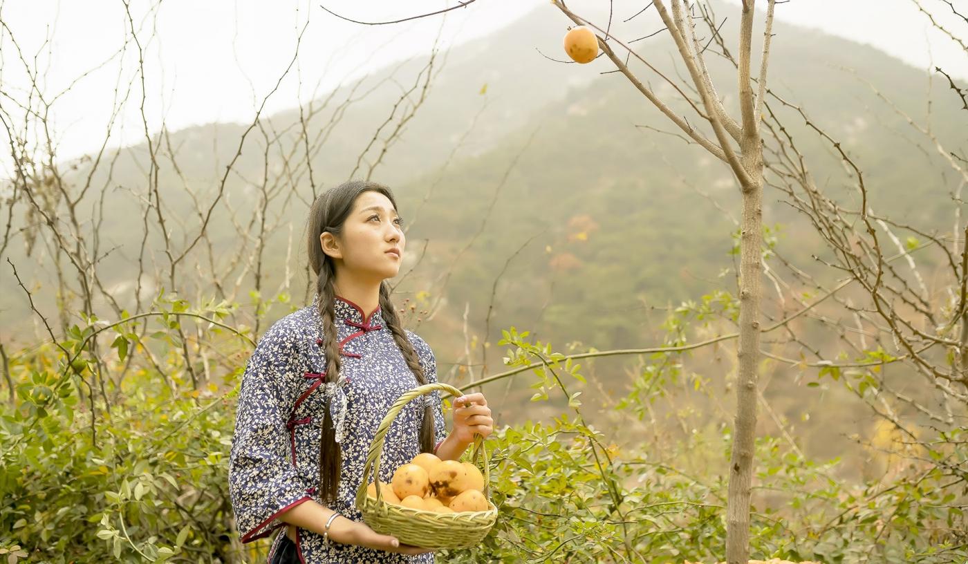 煎饼mm刘晓旭来到蒙山人家柿子节客串柿子西施_图1-1
