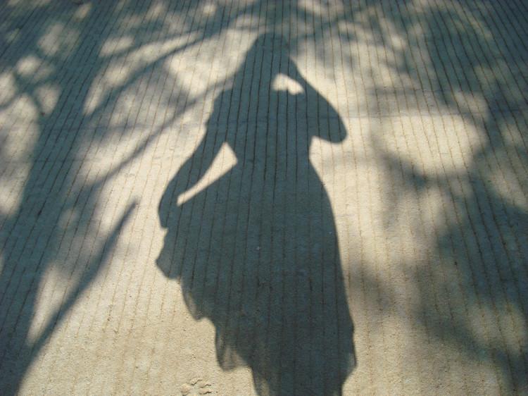 一个人的影子,两个人的故事_图1-1