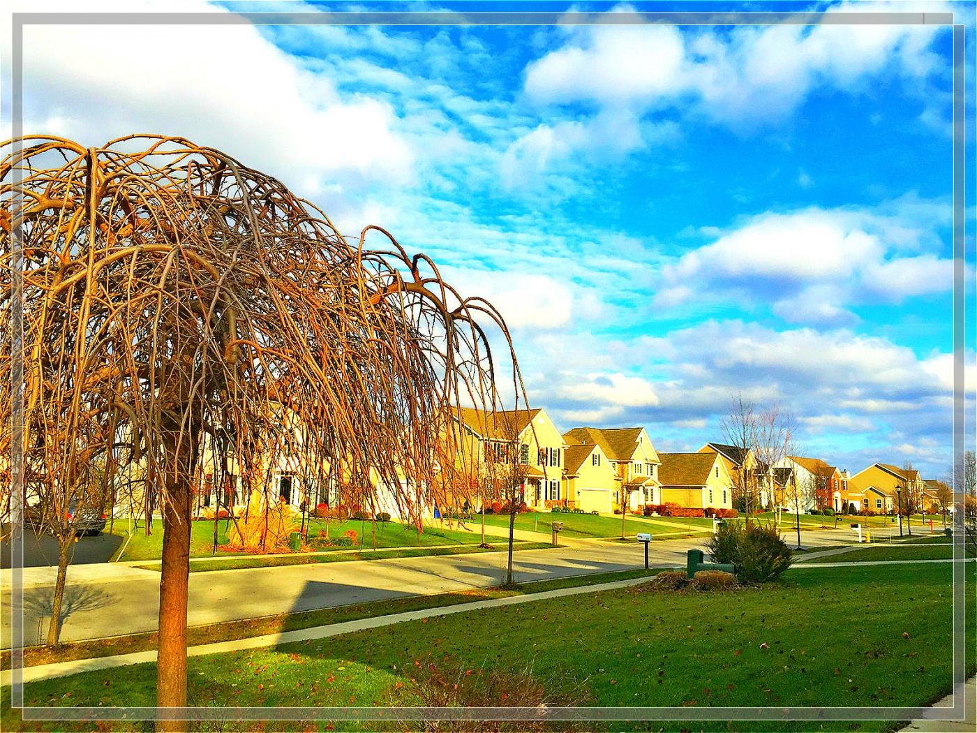 4格照片---蓝蓝的天空白云飘_图1-1