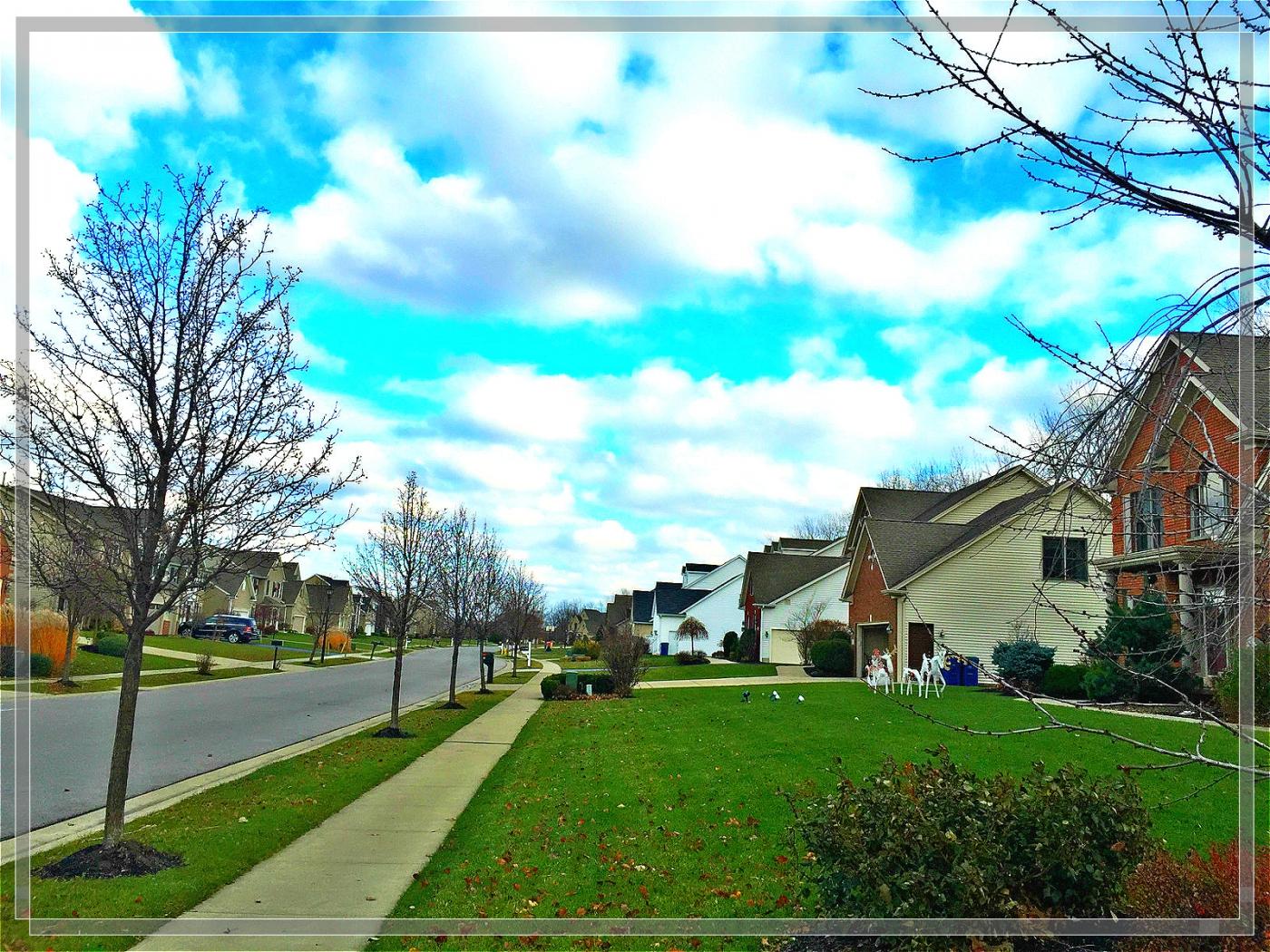 4格照片---蓝蓝的天空白云飘_图1-4