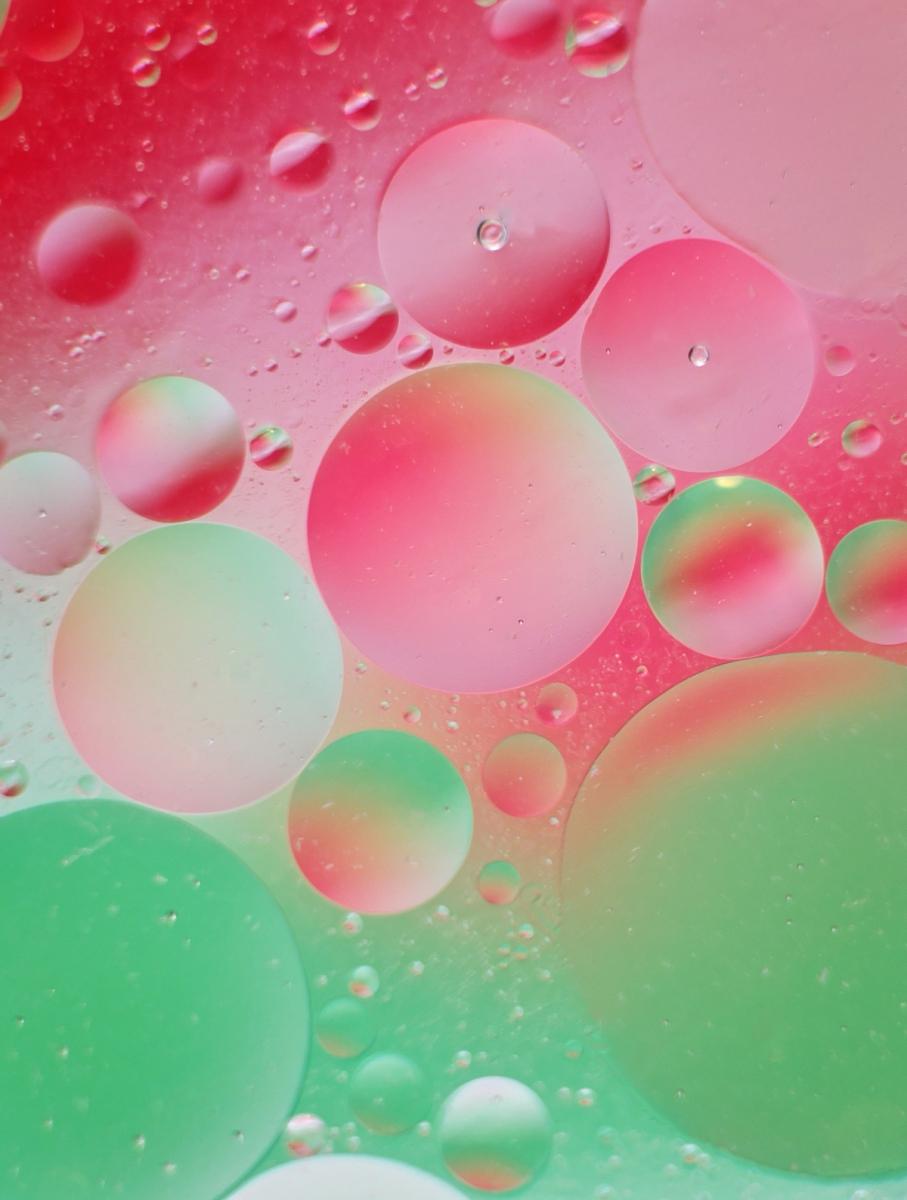 我镜头下的水泡【心想事成】_图1-6