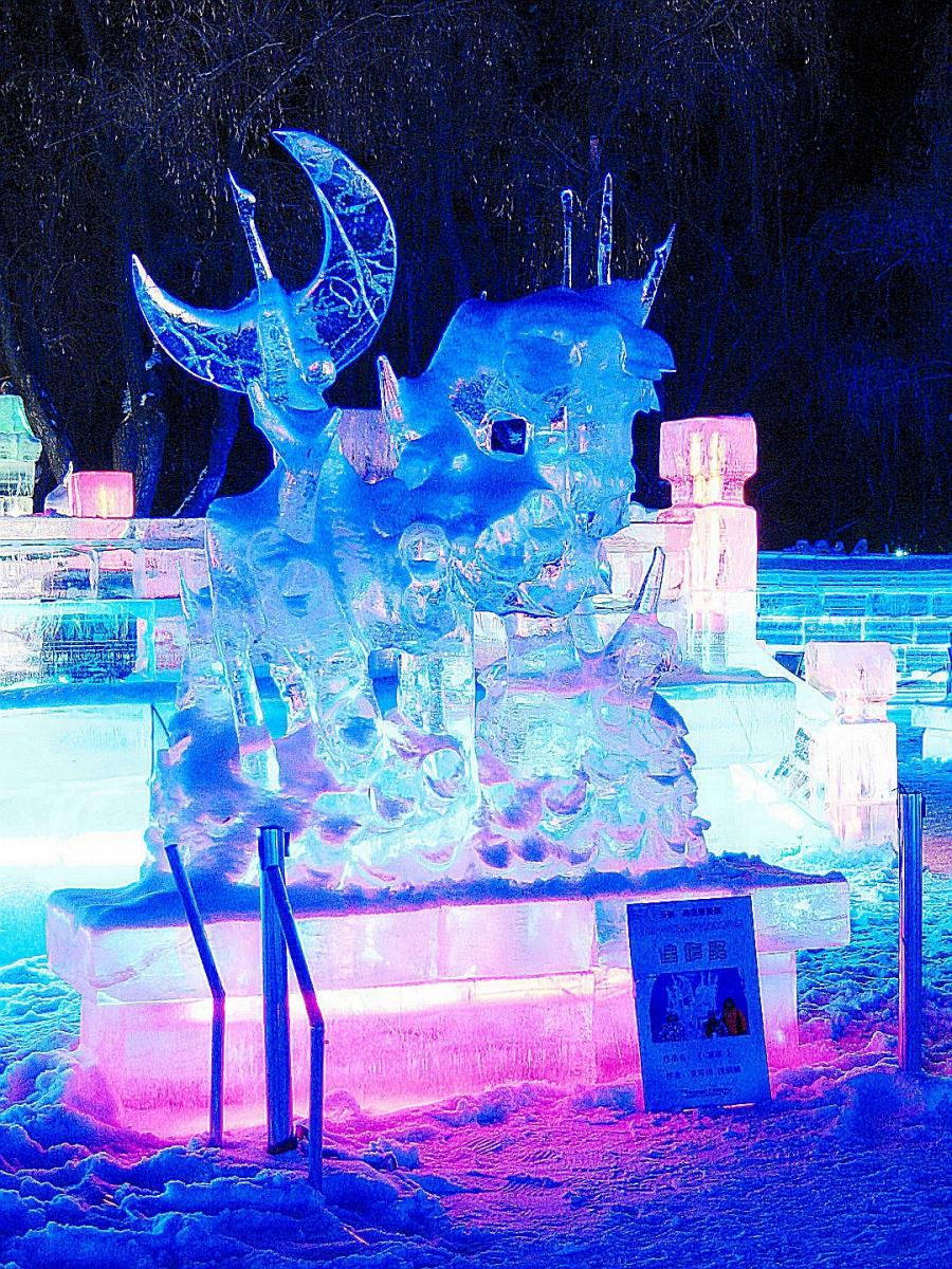 东北行-哈尔滨冰灯2015春_图1-12