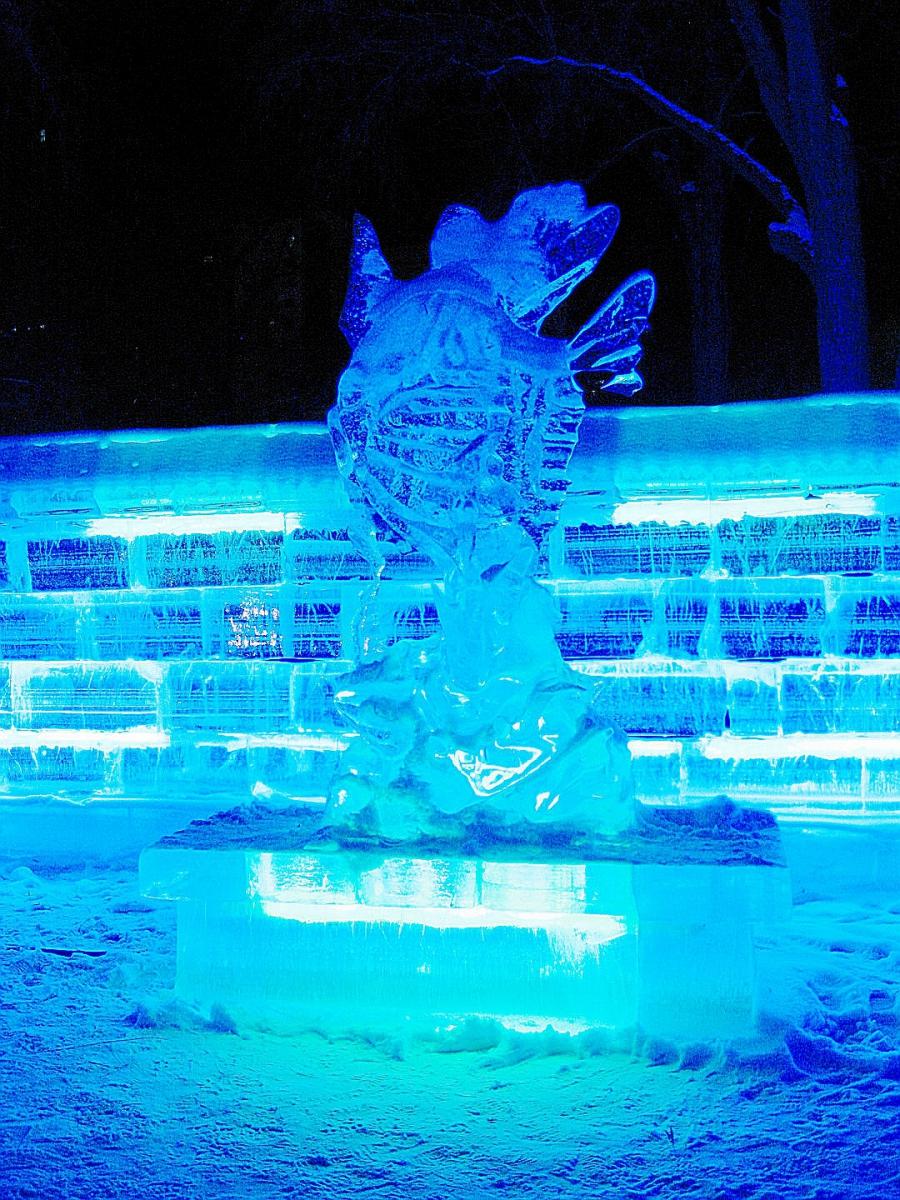 东北行-哈尔滨冰灯2015春_图1-13
