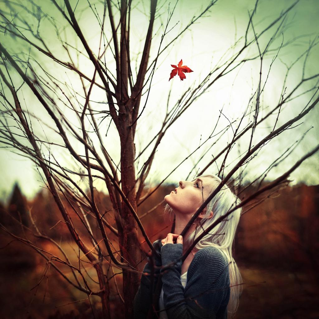 《最后的秋叶》_图1-1