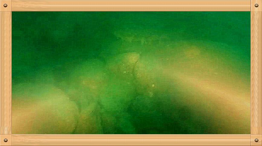 放飞情感《坐潜艇拍水下世界》_图1-13