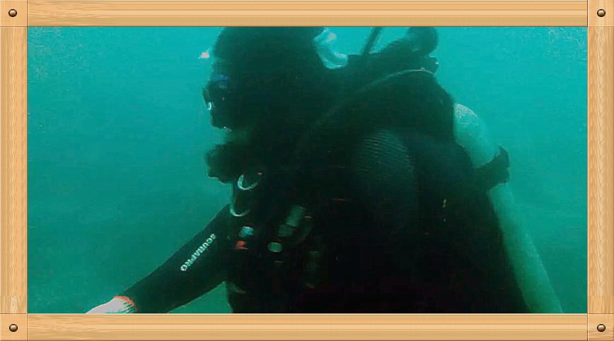 放飞情感《坐潜艇拍水下世界》_图1-14