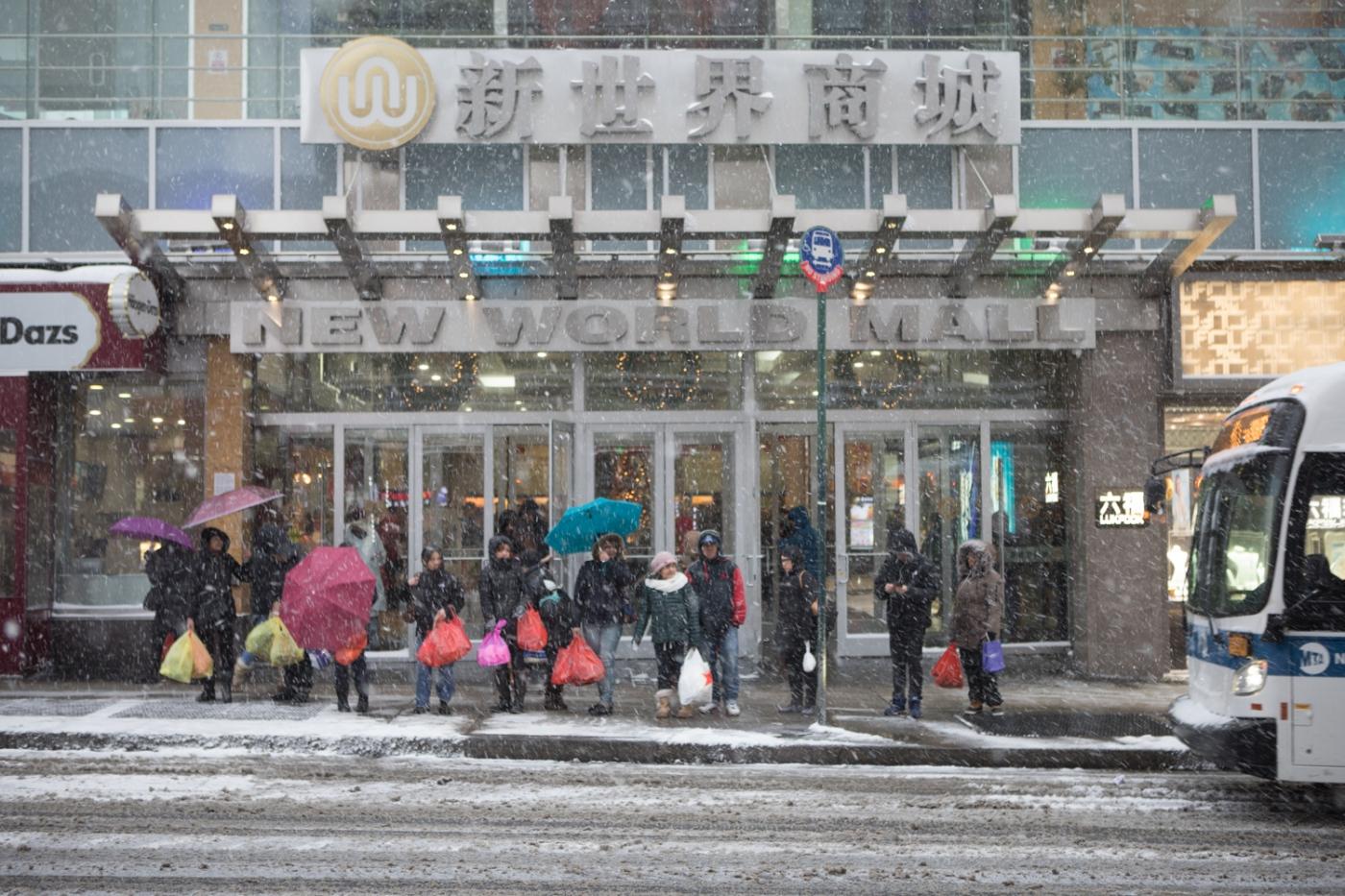 紐約: 風雪法拉盛 190107_图1-14