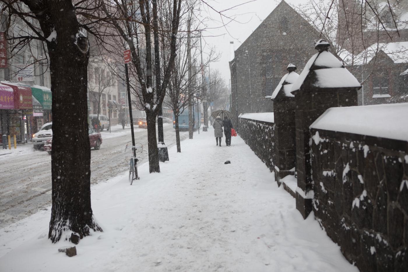 紐約: 風雪法拉盛 190107_图1-22