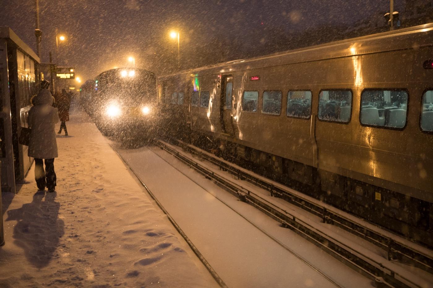 紐約: 風雪法拉盛 190107_图1-39