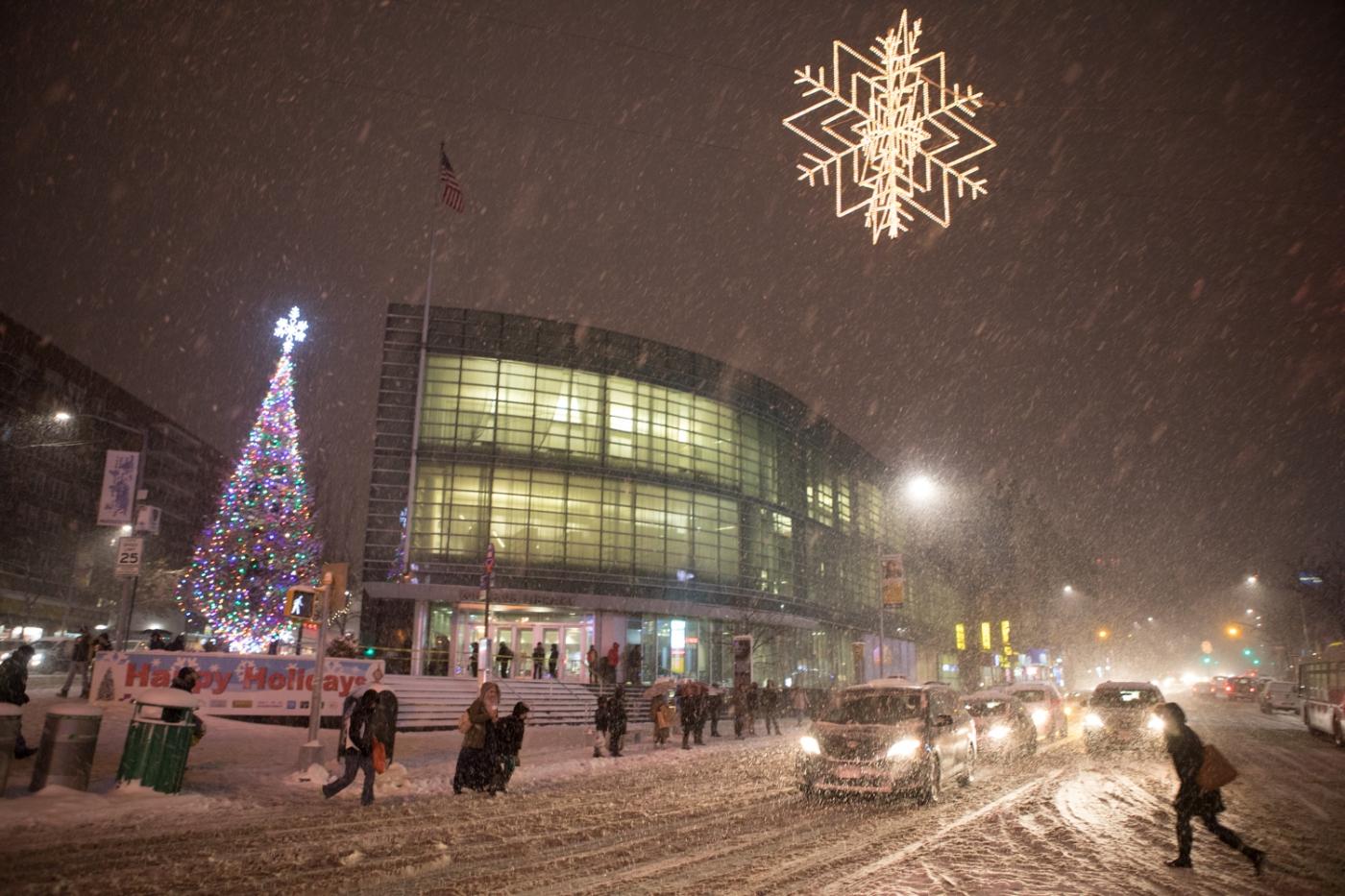 紐約: 風雪法拉盛 190107_图1-43