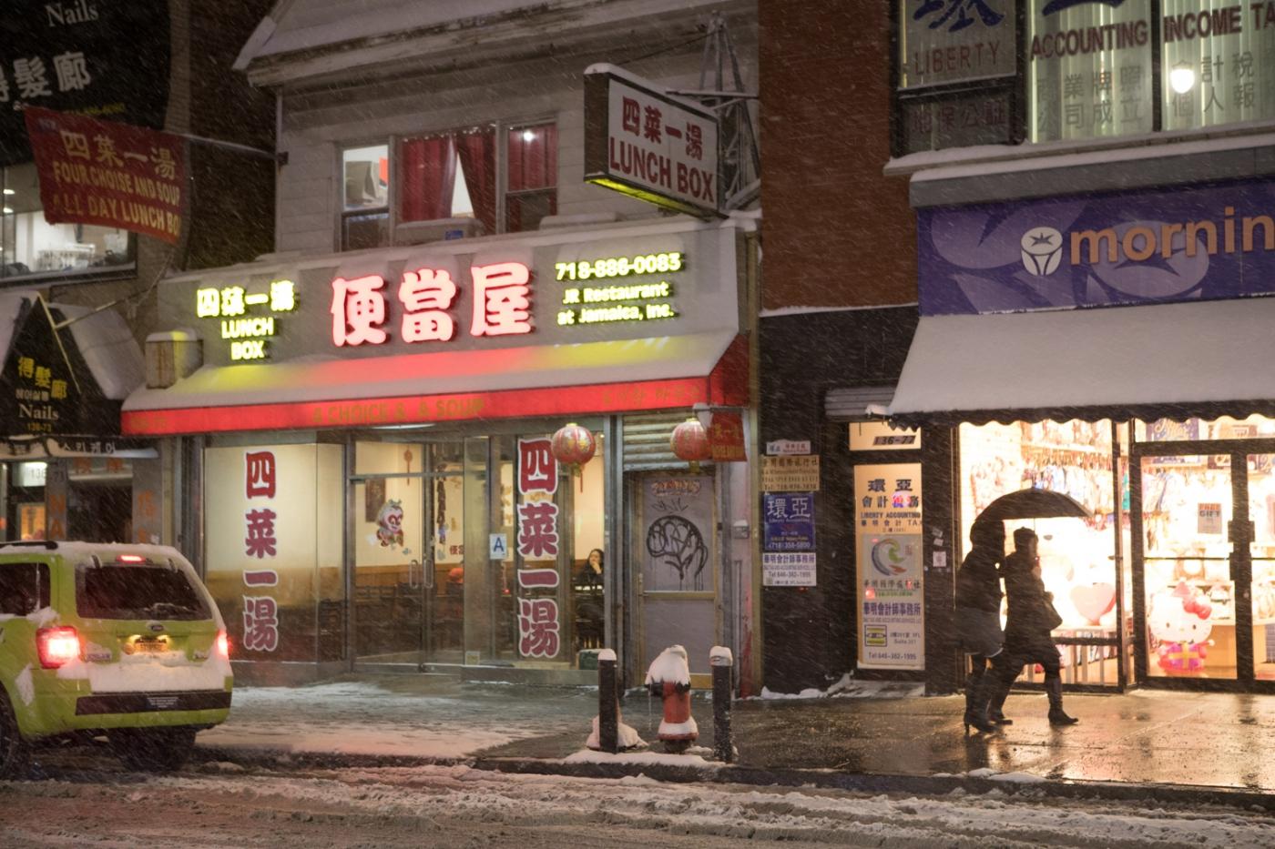 紐約: 風雪法拉盛 190107_图1-46