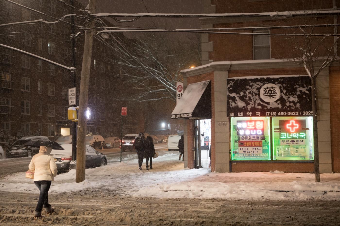 紐約: 風雪法拉盛 190107_图1-47