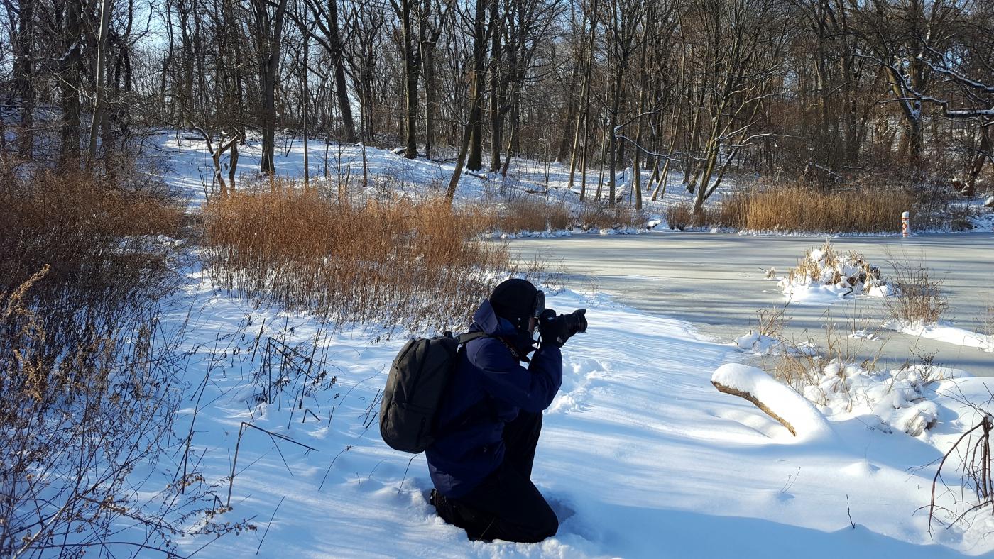 【田螺摄影】雪后去拍鸟随拍_图1-27