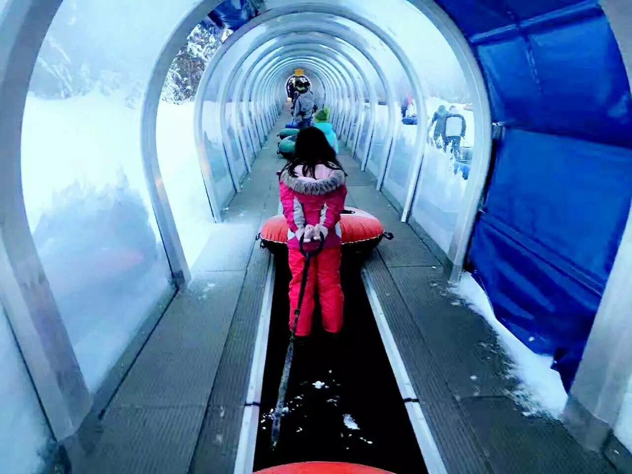 带娃游玩雷尼尔滑雪场(图)_图1-3