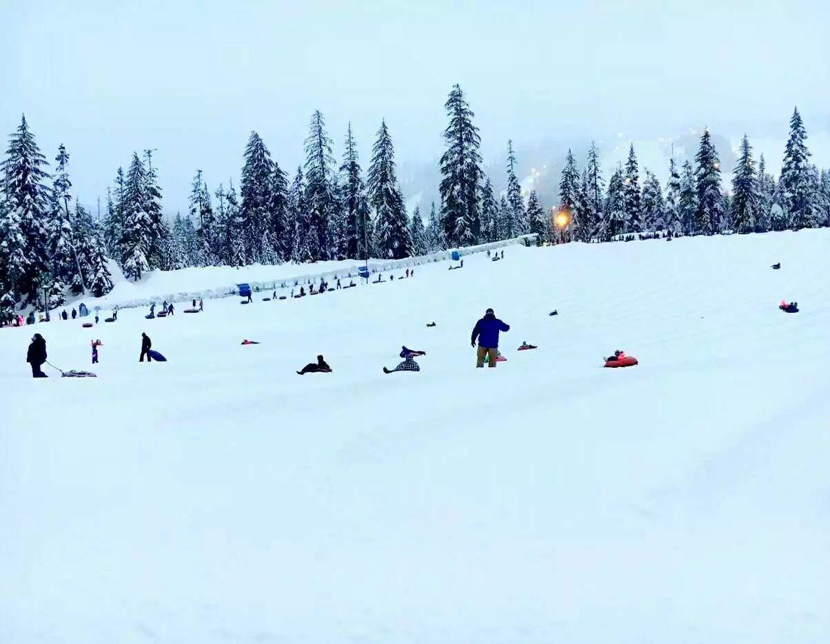 带娃游玩雷尼尔滑雪场(图)_图1-5