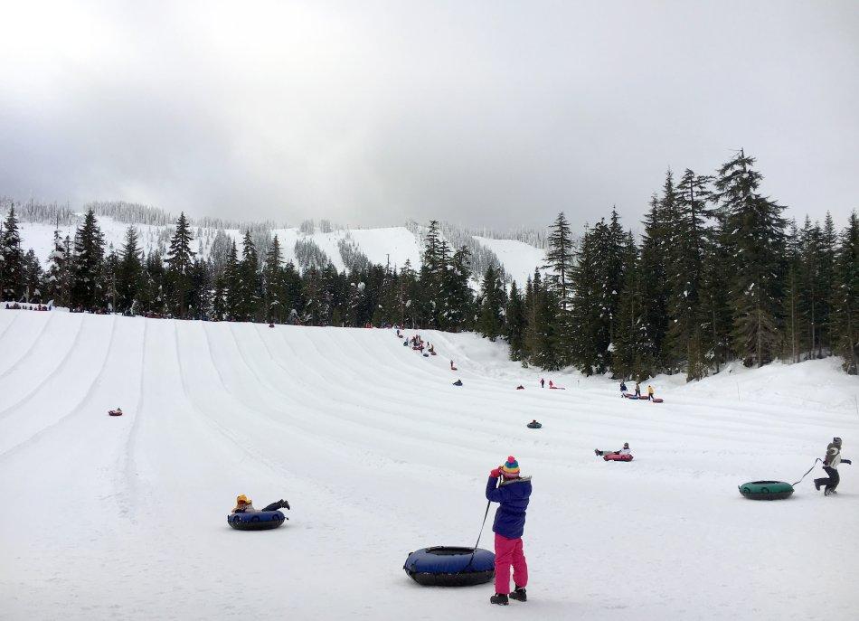 带娃游玩雷尼尔滑雪场(图)_图1-6
