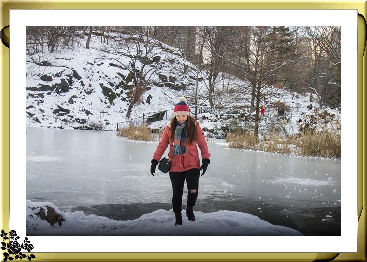 2017年第一次大雪——中央公园雪景_图1-8