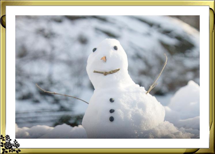 2017年第一次大雪——中央公园雪景_图1-17