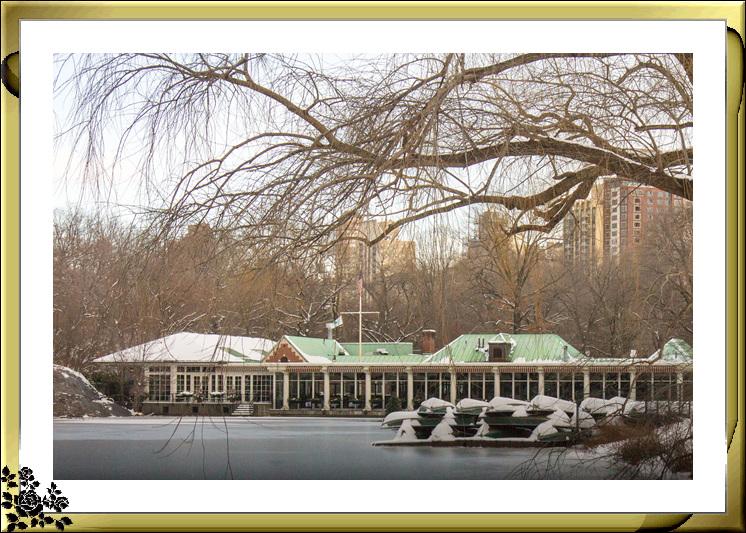 2017年第一次大雪——中央公园雪景_图1-19