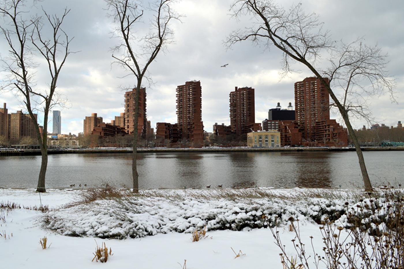 纽约小景99_图1-8