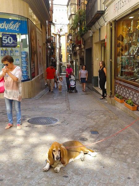 西班牙街頭隨影_图1-17