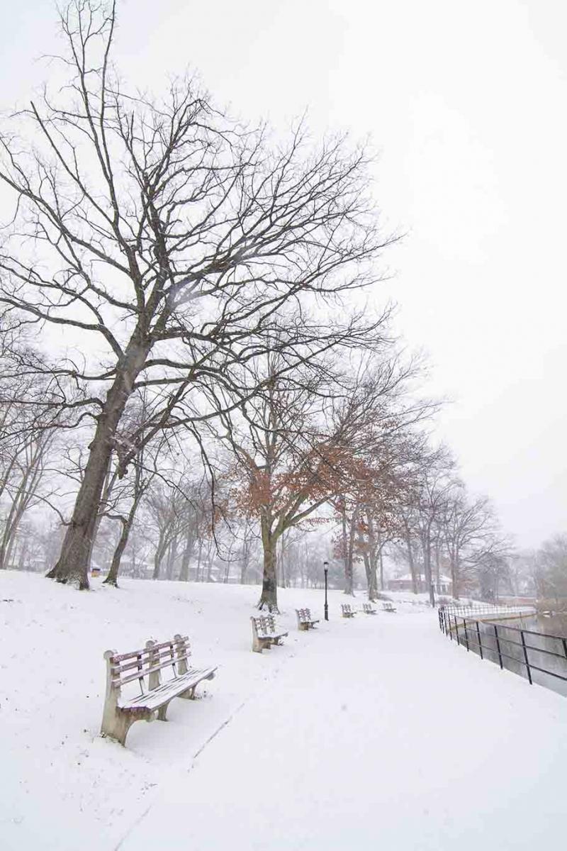 雪中即景_图1-6