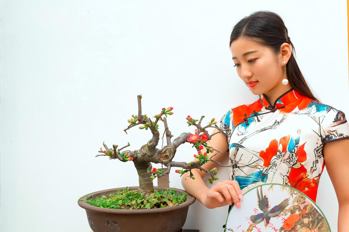 当沂蒙女孩遇到中国人自己的服饰 和摄影人的新年艳遇开始了 ..._图1-26