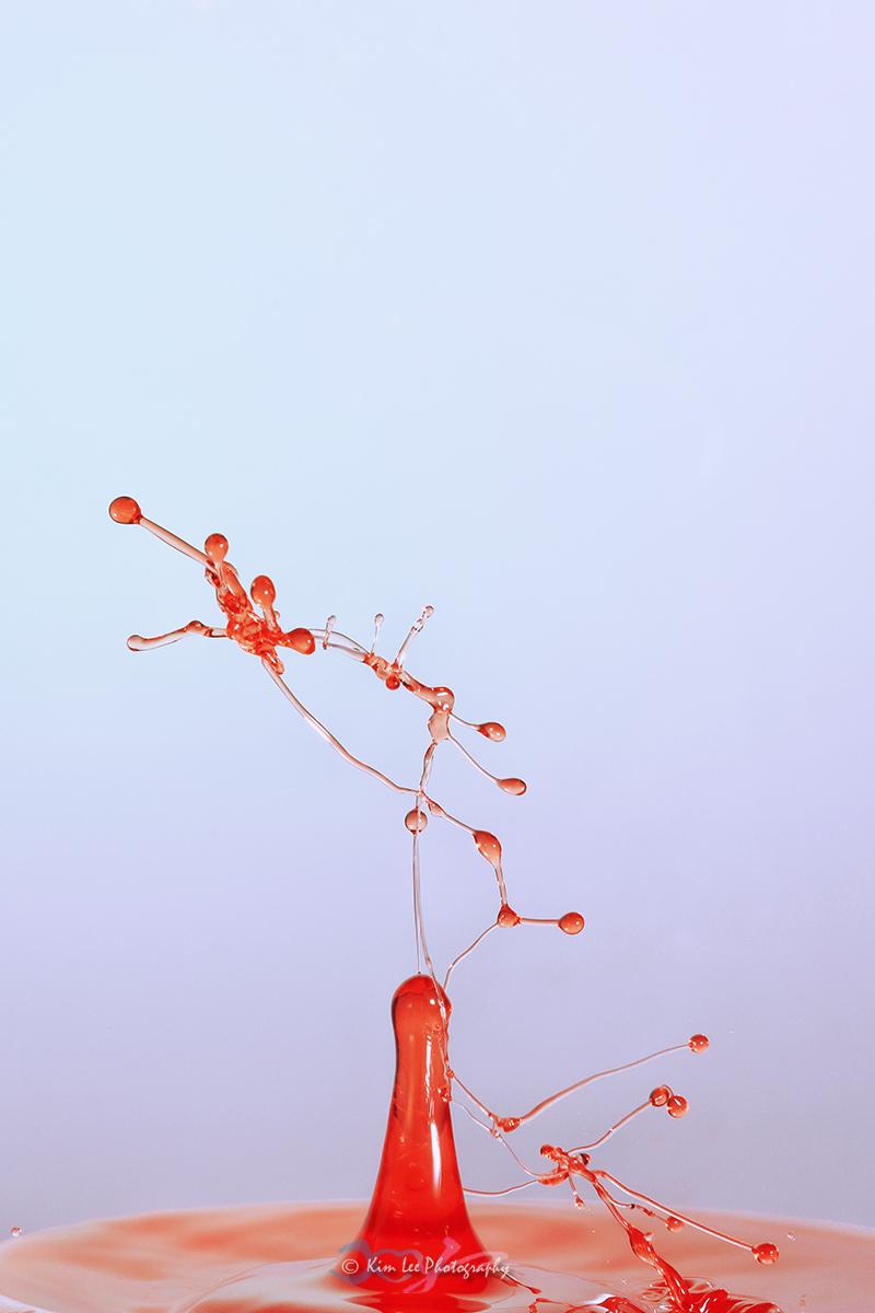 红色诱惑_图1-1