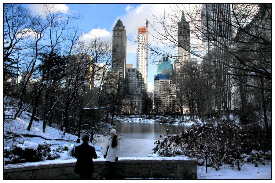 紐約中央公園的雪景