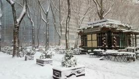 【田螺摄影】下大雪、我42街下来―路手机随