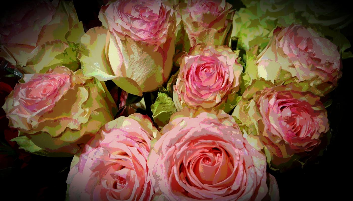 【田螺摄影】逛超市随拍情人节的玫瑰花_图1-3