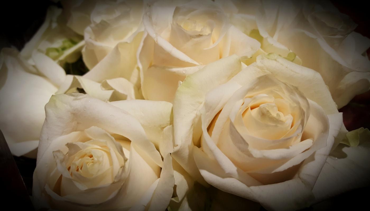 【田螺摄影】逛超市随拍情人节的玫瑰花_图1-4
