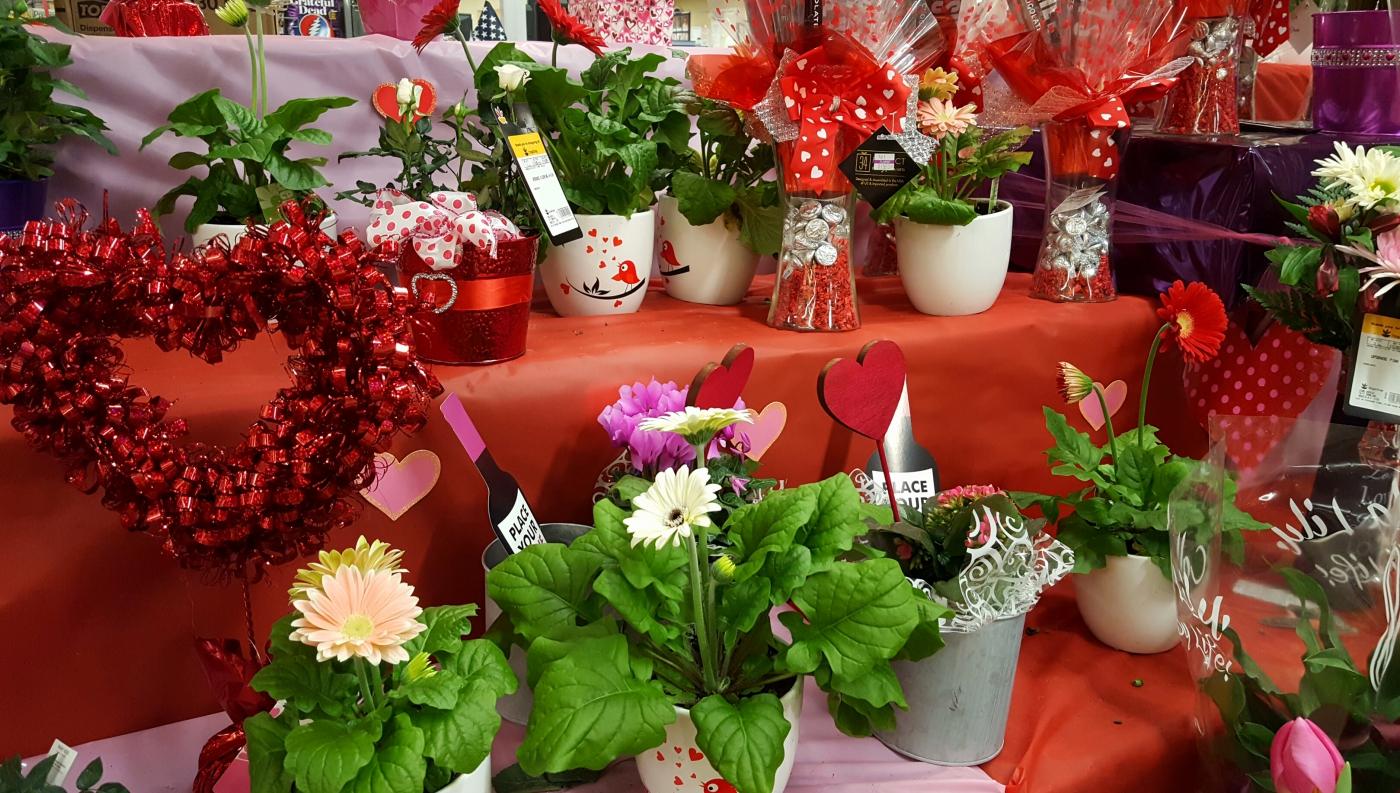 【田螺摄影】逛超市随拍情人节的玫瑰花_图1-14