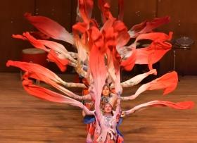 林肯中心华人迎春歌舞表演