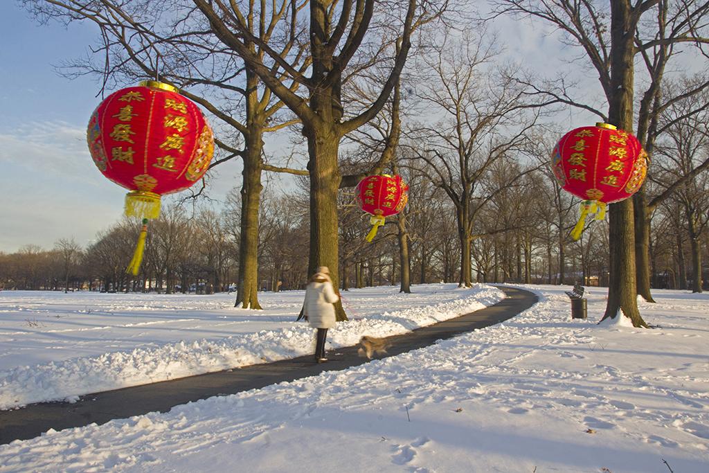 皇后區歡慶農曆新年攝影比賽頒獎典禮_图1-2