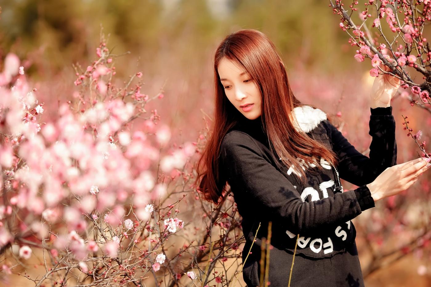 费县的春天从鲜花烂漫的梅林和女孩张诗奇的偶遇开始_图1-2