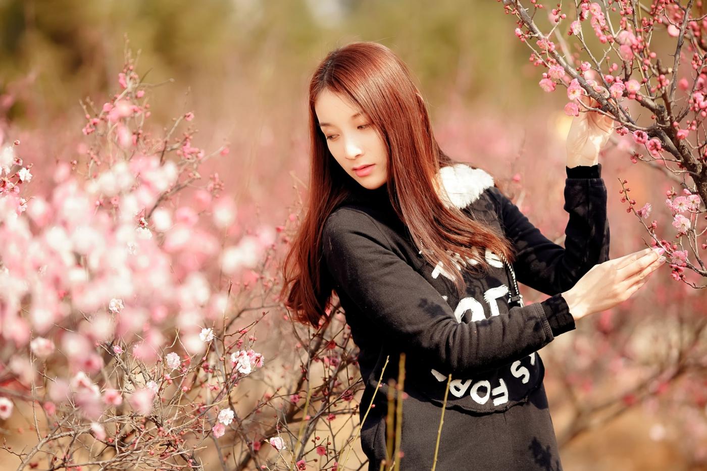 费县的春天从鲜花烂漫的梅林和女孩张诗奇的偶遇开始_图1-3
