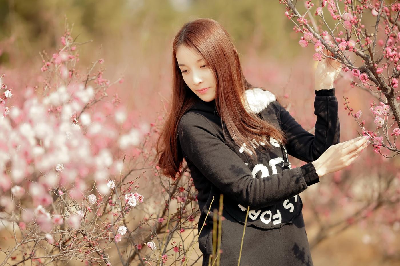 费县的春天从鲜花烂漫的梅林和女孩张诗奇的偶遇开始_图1-4