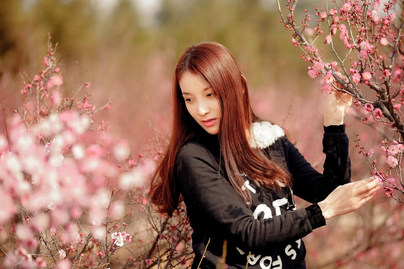 费县的春天从鲜花烂漫的梅林和女孩张诗奇的偶遇开始_图1-5